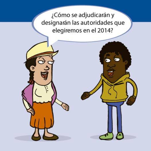 ¿Cómo se adjudicarán y designarán las autoridades que elegiremos en el 2014?